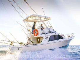 Black Fin 29' - Raiatea Yacht Broker