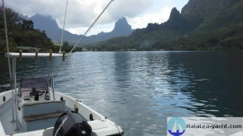 Centre de Pêche sportive - Raiatea Yacht Broker