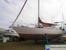 Fruit de mer Acier - Raiatea Yacht Broker