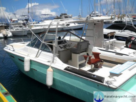 Sea Ray 24 DAY CRUISER - Raiatea Yacht Broker
