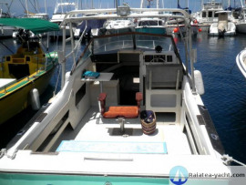 Sea Ray 24 DAY CRUISER