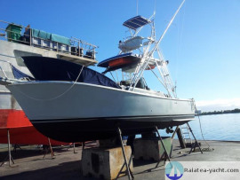 Strike Open 26 - Raiatea Yacht Broker