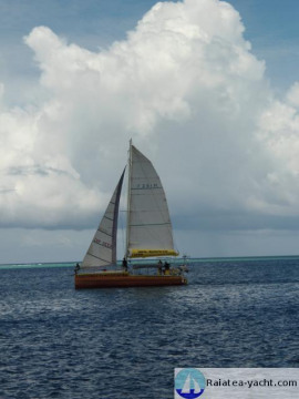 Catamaran Alu